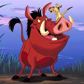 Timon-and-Pumbaa-THE-LION-KING